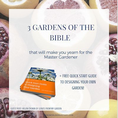 Guest post by Helen Cronin introduces us to 3 favorite gardens of the Bible. Plus, get Helen's FREE Quick Start Guide to Designing Your Garden! - https://www.realworldbiblestudy.com