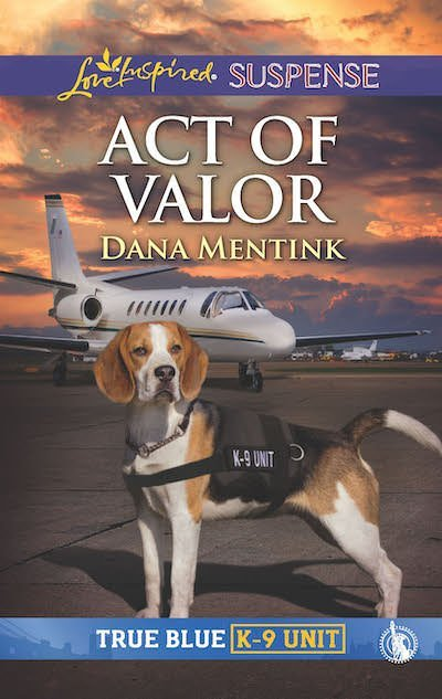 Act of Valor book cover